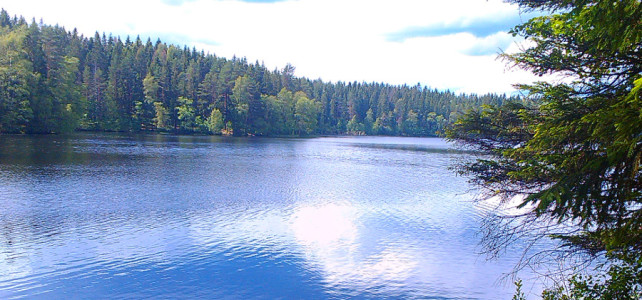 В Ленинградской области завершено строительство межпоселкового газопровода к поселку Симагино
